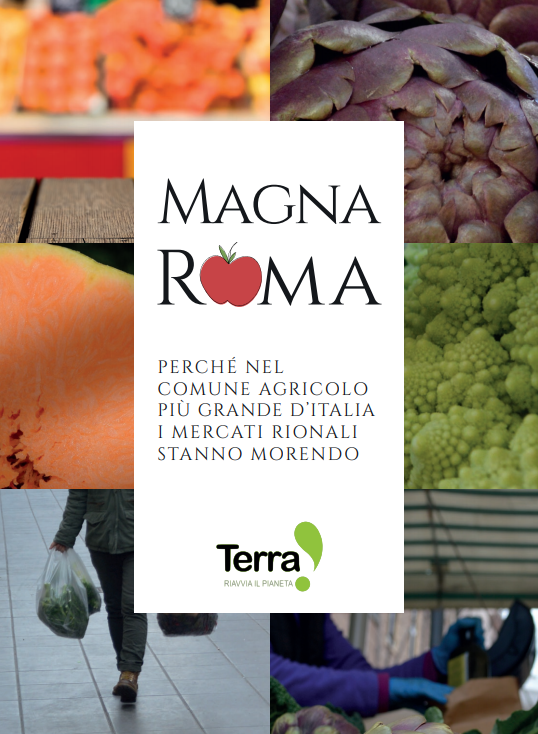 Magna Roma cover